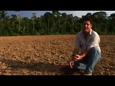 Environment vs Development - Amazon: Truth and Myth - BBC