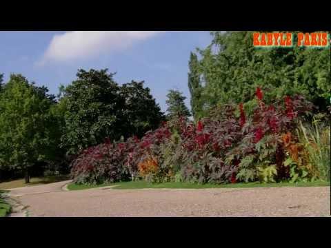 Parc floral de Paris ( Vincennes).
