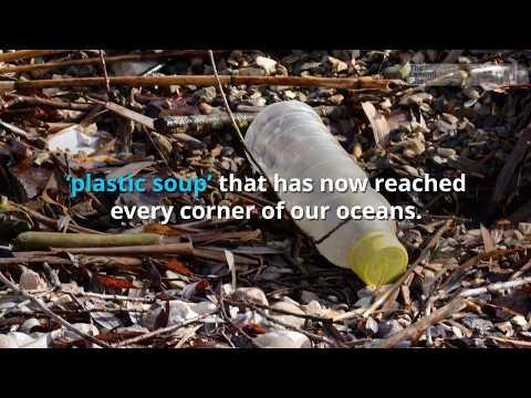 How to Reduce Ocean Litter -  Stopping Plastic Bottle Marine Trash