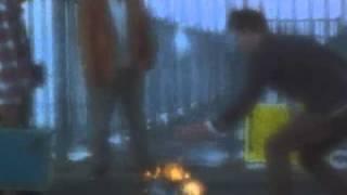 Ansel- A Fancy Rollerskater