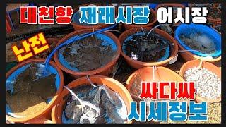대천재래시장  재미가 있는 난전어시장 다양한 수산물 해…
