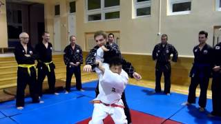 Hapkido/Judo - training with dr Akitoshi Sogabe from Japan