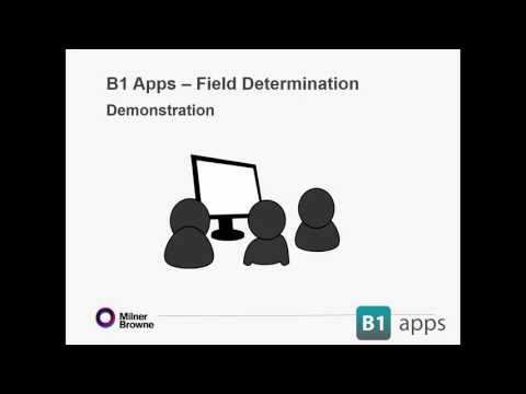 Get your data right in SAP with B1 Field Determination ( Full Overview)