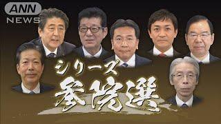 シリーズ参院選 自民党「政治の安定を」訴え(19/07/18)