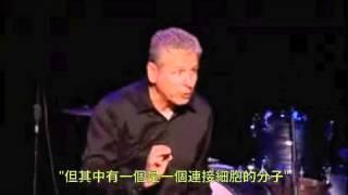 Laminin ( Chinese Subtitle 中文翻譯 )