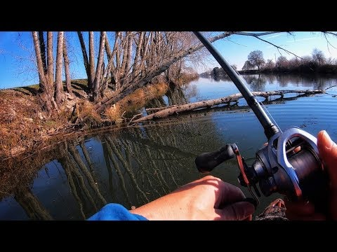 shallow-jigs-on-wood-(prespawn-delta-bass-fishing)