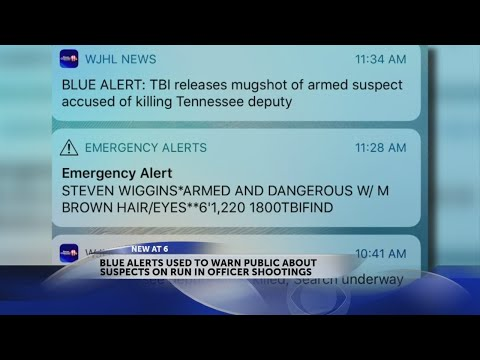 What is a Blue Alert and why did you get one on your phone?