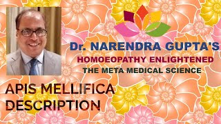 APIS MELLIFICA DESCRIPTION BY Dr. NARENDRA GUPTA IN HINDI LANGUAGE