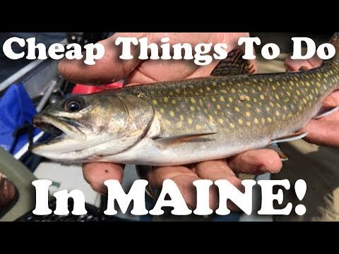 Dirt Cheap - Grand Lake Matagamon, Maine (East Branch of Penobscot River)