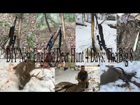 Deer Hunting New England (NH) 4 Days: The Big 8