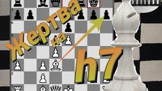 Уроки шахмат. Жертва слона на h7. Типовая комбинация. Атака на короля.
