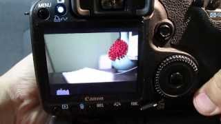 50D Magic Lantern Guide + Quick HD Video Test(Click