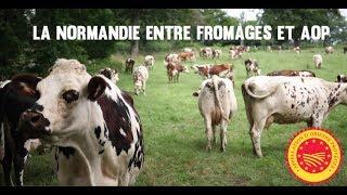 Les fromages AOP de Normandie