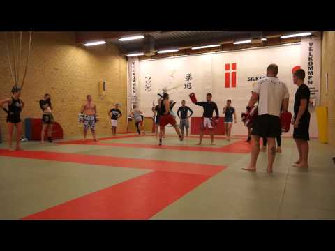 Fight Center Silkeborg (FCS) seminar #1