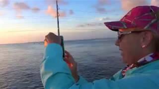 islamorada Channel 2 Bridge/Pier Fishing