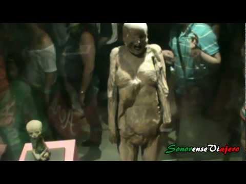 Shakira - Suerte (Whenever, Wherever) de YouTube · Duración:  3 minutos 13 segundos