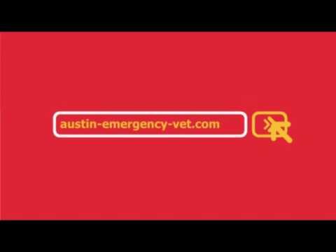 Austin Emergency Vet - 24 hour Animal Clinic