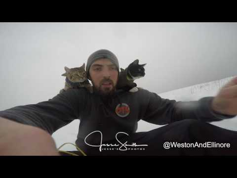 Sledding with BOTH of my Cats!