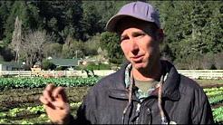 Virtual Farmers Market: Front Door Delivery
