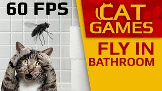 CAT GAMES - 😺 Fly in the Bathroom (VIDEO FOR CATS TO WATCH) 60FPS