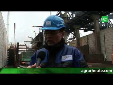 Reportage: Täglich 800 Lastwagen mit Zuckerrüben