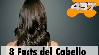 8 Datos Curiosos del Cabello | 437 What the fact! Datos Curiosos