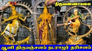 Thiruvannamalai   ஆனிதிருமஞ்சன விழா   ஆனி திருமஞ்சனம் நடராஜர் தரிசனம்