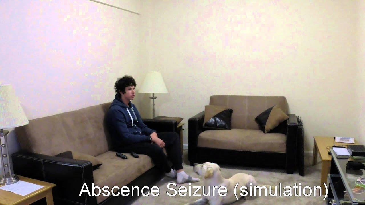 Lovely Seizure Simulations