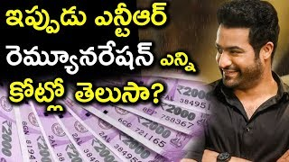 Jr NTR Movies Remuneration Details After Aravindha Sametha Blockbuster | Tollywood Nagar