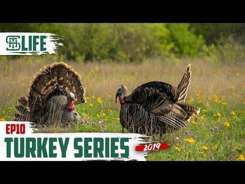 20 GAUGE Turkey Hunt Up Close Texas Rio | Smalltown Life