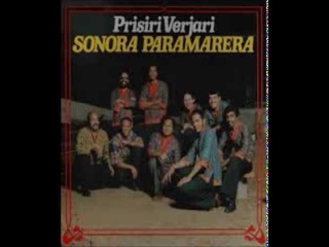 SONORA PARAMERERA --  BORRACHO