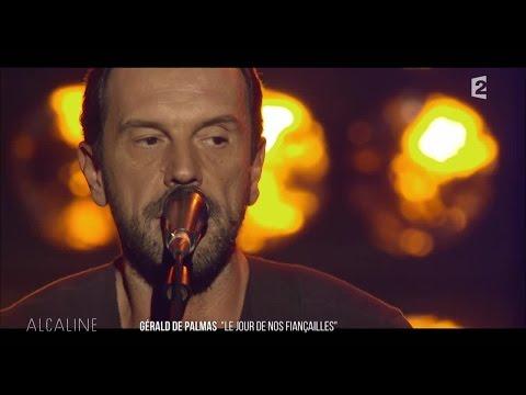 Alcaline, Le Concert - Gérald de Palmas