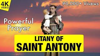 LITANY OF SAINT ANTONY   4K VIDEO   SAINT ANTONY PRAY FOR US