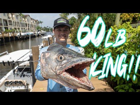 $60,000 KING!! Tournament Winning 60lb HEAVYWEIGHT Mackerel Battle! 👊
