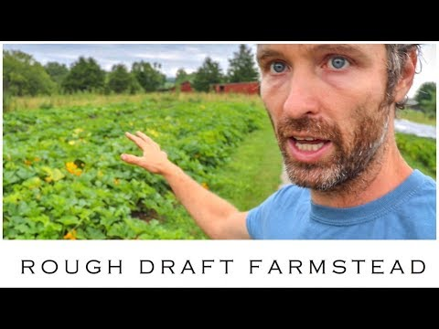 What is Dry Farming? + Food Preservation Tips from Busy Farmers