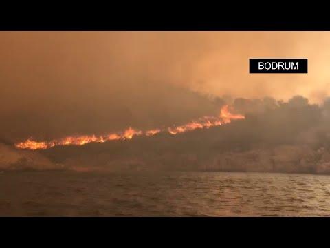 Bodrum, Manavgat ve Marmaris'in Turunç Mahallesi'nde yangınlara havadan ve karadan müdahale sürüyor