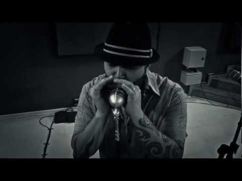 "BLIND DOG - Leandro Ferrari aka Harmonica FX - DVD ""Blues Road Trip"""