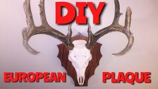 MAKE A PLAQUE FOR A EUROPEAN MOUNT