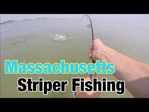Massachusetts STRIPER Fishing! (Surf Fishing)