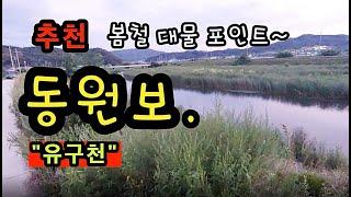 [공주]_ 유구천 동원보 낚시 포인트 / 봄철 대물 낚시 포인트 / 충남 공주시 신풍면 동원리 508-1
