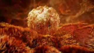 развитие эмбриона с момента оплодотворения in vitro и до 5-6 дня развития (реальное видео)