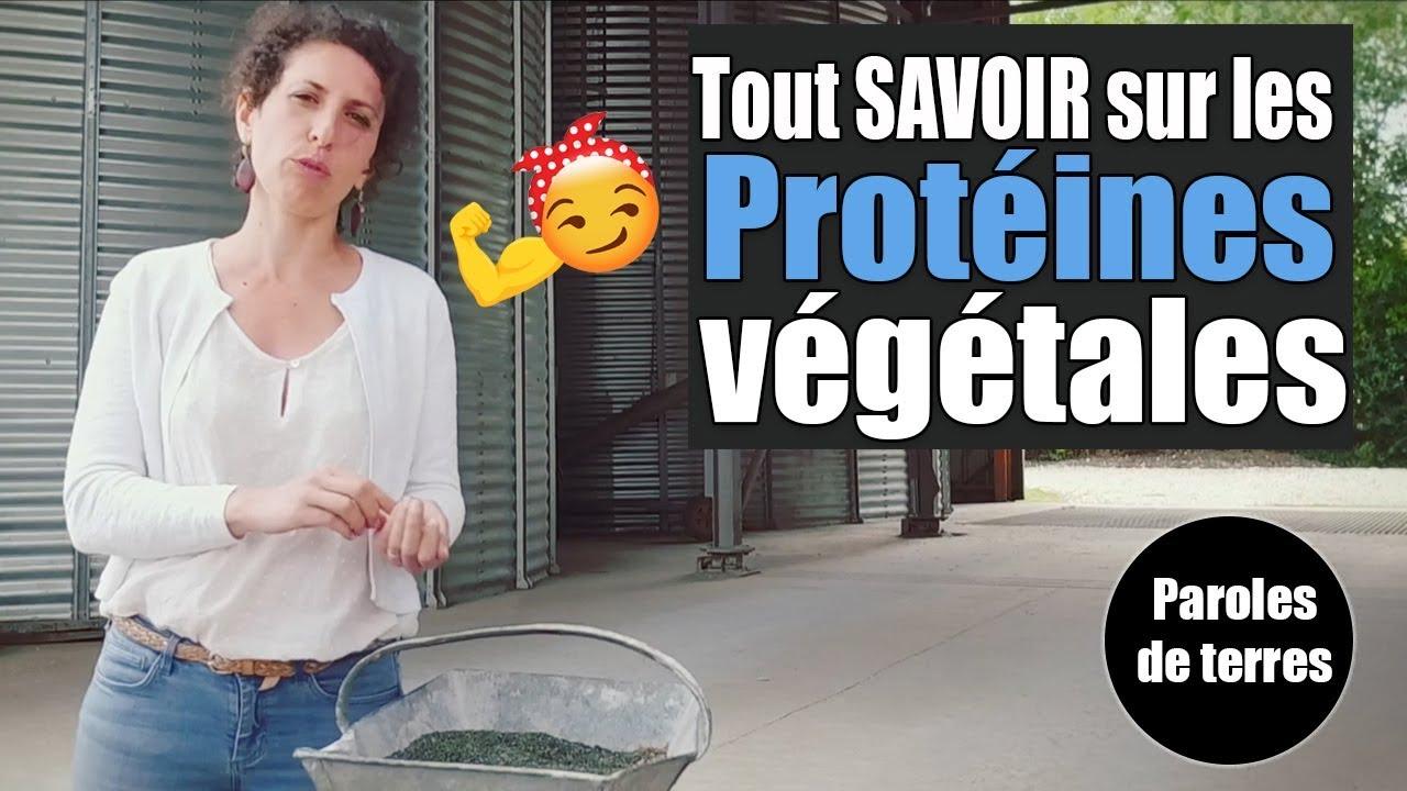 Qu'est-ce qu'une protéine végétale ? Paroles de Terres - Saison 3