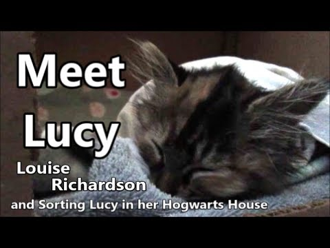 Meet Lucy and finding her Hogwarts Quiz day 2147