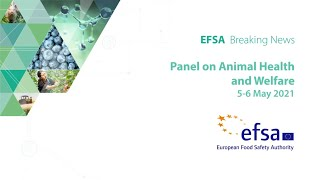 Breaking news from EFSA's expert meetings: Animal health and welfare