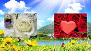 """""""С Днем Рождения!!! Розы красные, розы белые..."""""""