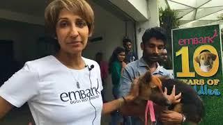 Embark Adoption Day at Embark HQ thumbnail