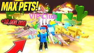 This Is What MAX PETS Looks Like In DINO PET SIMULATOR! *INSANE* (Roblox)