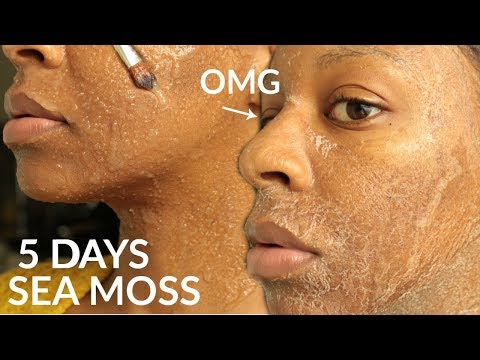 I Used SEA MOSS GEL on My FACE for 5 Days & WOW!!