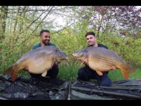 Carp Fishing France - Etang Du Bois - April 2016
