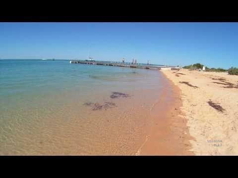 Monkey Mia - Shark Bay - Western Australia - HD